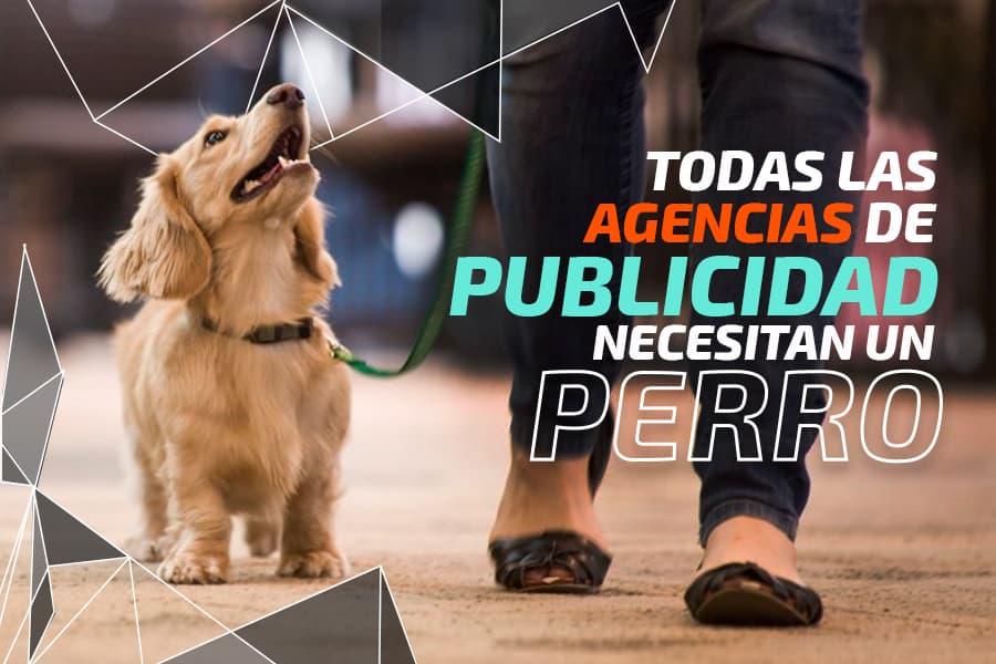 Todas las agencias de publicidad necesitan un perro